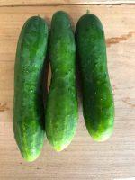 Concombre (au kg)