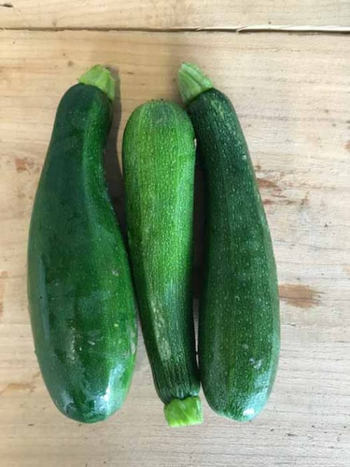 courgettes_maupitet