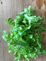 Salade coupée (100gr)